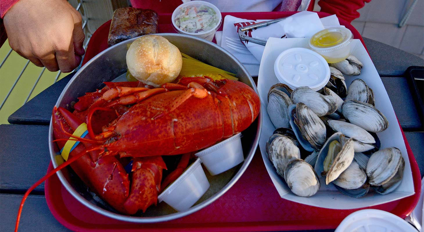 A plate with a lobster and steamed clams