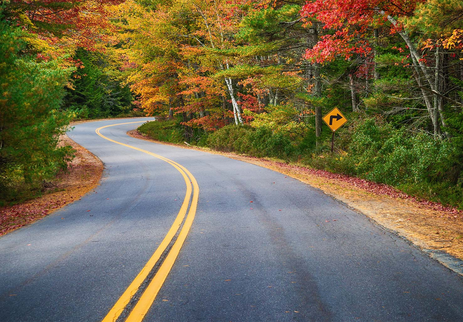 A scenic drive through autumn colors
