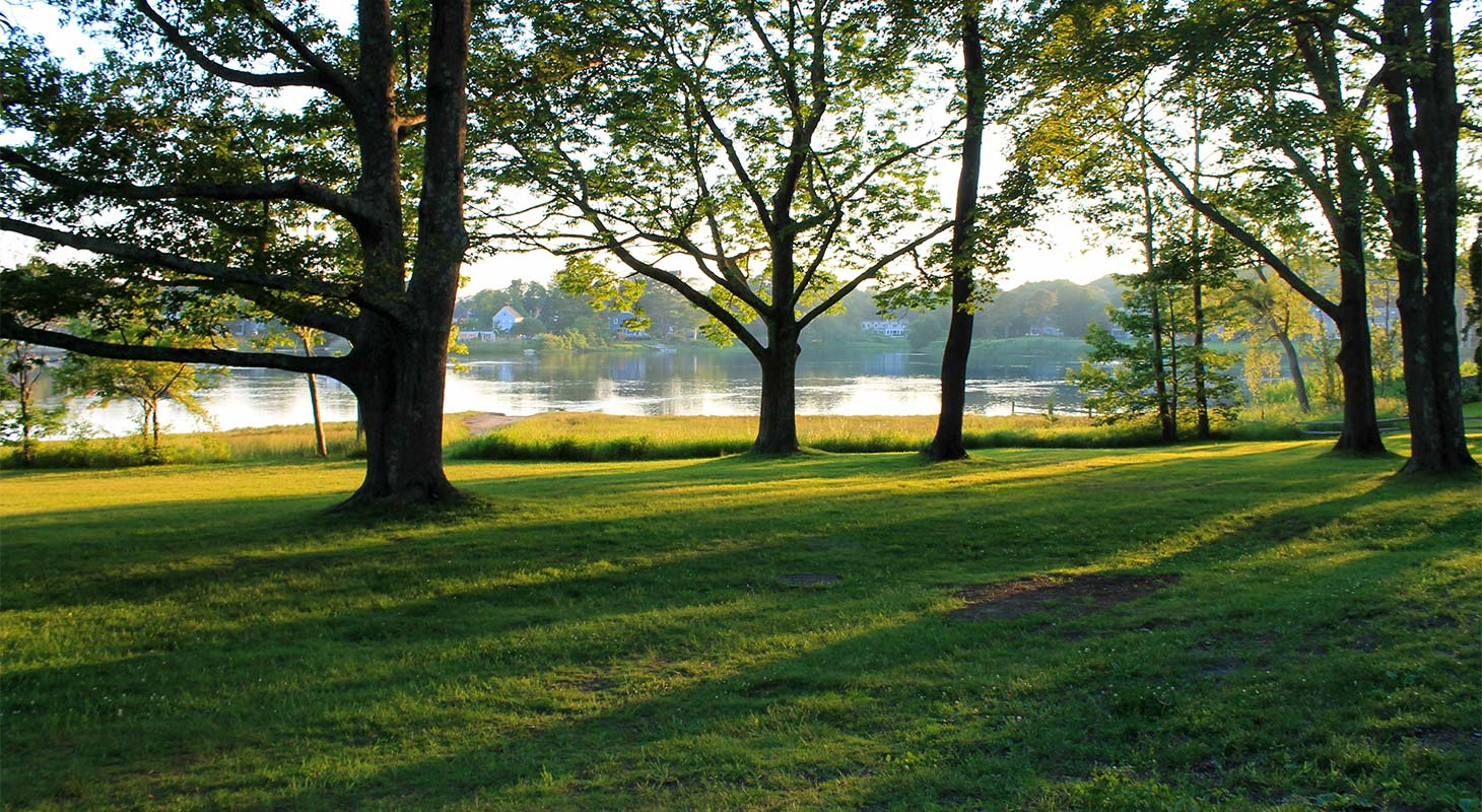 A lawn and a grove of trees with a lake in the background