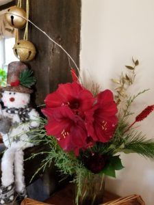 Amaryllis, Christmas decorations, snow man and sleigh bells.
