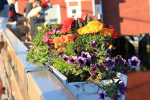 Flower Box in downtown Kennebunkport