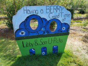 Handpainted blueberry sign at Libby Orchards