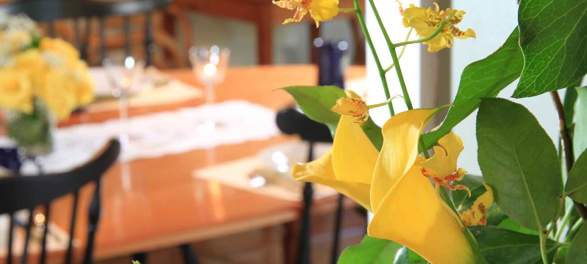 Yellow flowers close up, dining table behind it